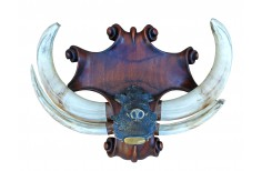 Carved Taxidermy trophy shield base for a pig trophy